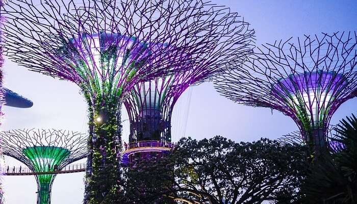 Singapore Attraction Colorful Gardens By The Bay