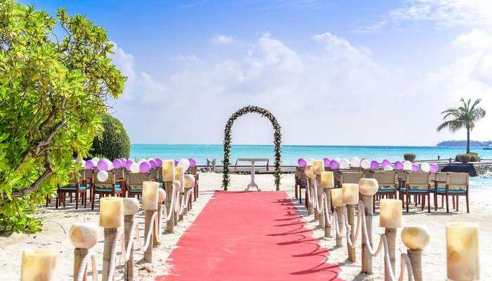 exclusive place for Wedding