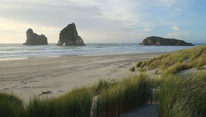 Wharariki beach view