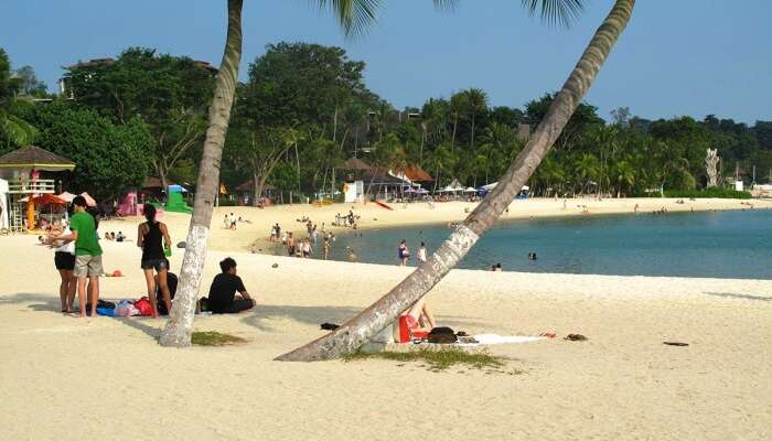 The Ideal Palawan Beach Guide For Your Trip To Singapore