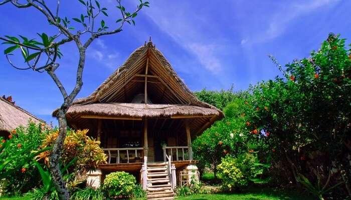 Flower Bud Resort