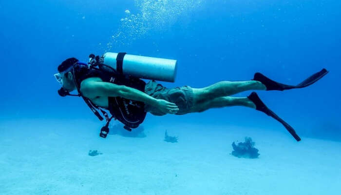Go for Scuba Diving