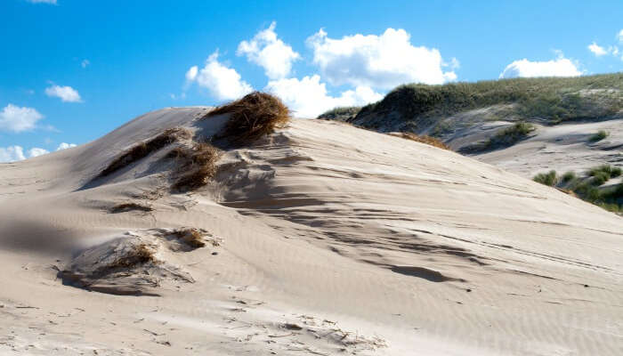 Dune in S³owiñski National Park