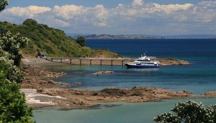 Tiritiri Matangi Island