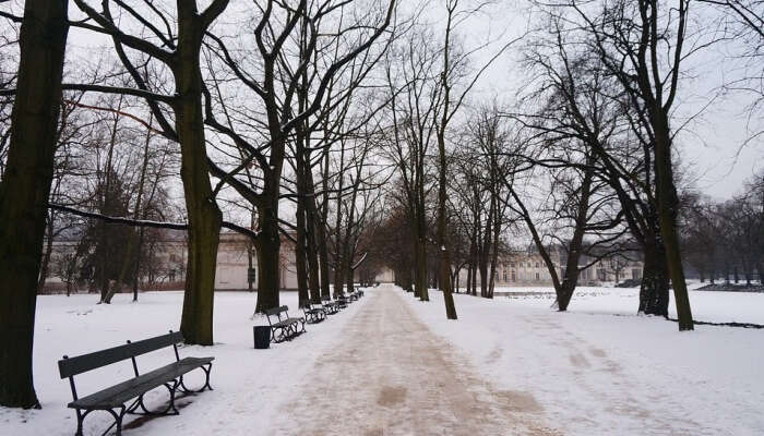 Weather In Poland In Winter