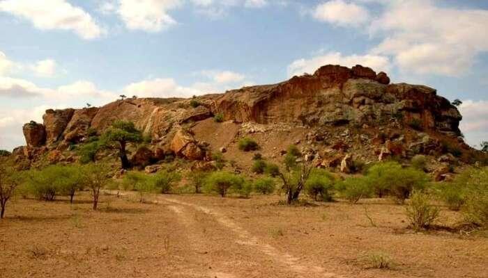 About Mapungubwe National Park