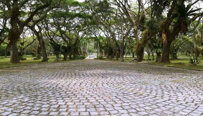 About The Pasir Ris Park