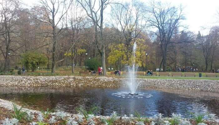 Bernardine Garden