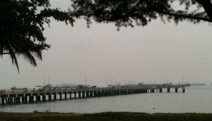 Best Time To Visit East Coast Park