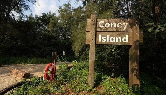 Coney