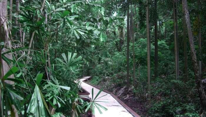 George Botanical Garden
