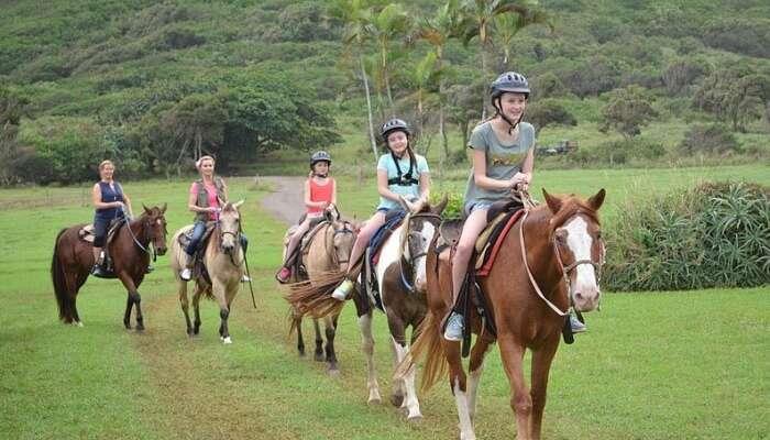 Horseback Riding Lessons at Khao Lak Horse Club