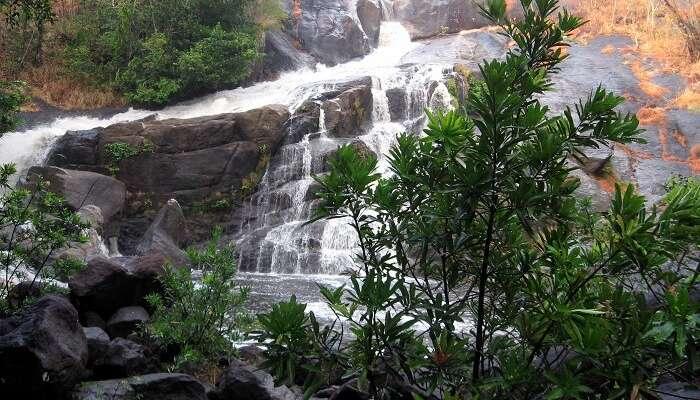 19 Stunning Waterfalls Near Bangalore Worth Seeing In 2019