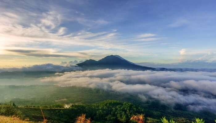 Mount Kawi Tips