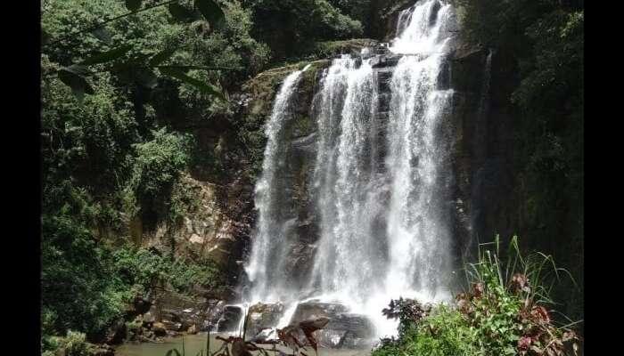 Mount Vernon Waterfalls view