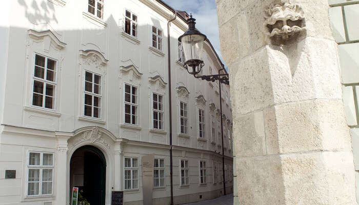 Museum of Viticulture