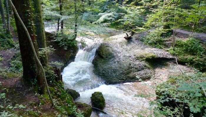 Scheidegger Wasserfalle