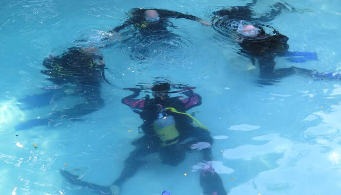 ScubaCo Diving & Travel
