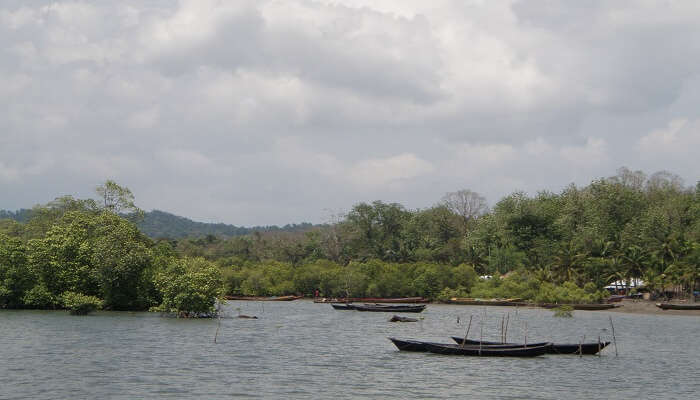 Fishing boats at an island in Andaman