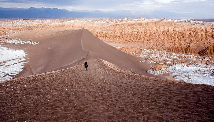 person walking on the desert sand