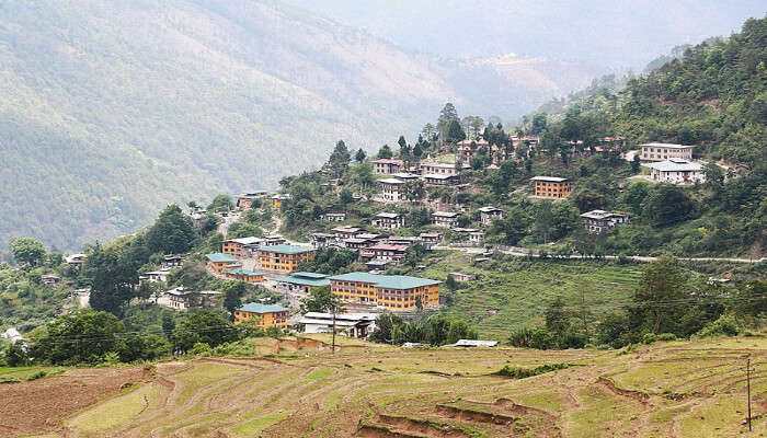 Adang Village