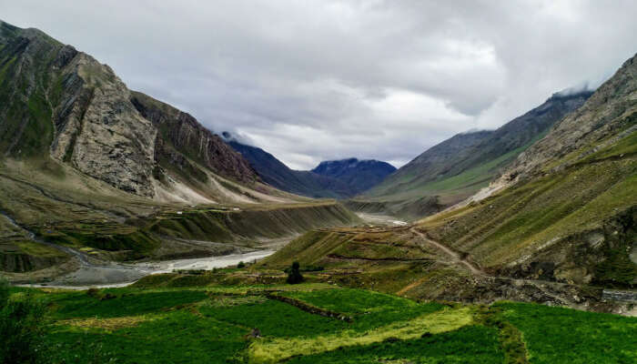 Top 5 National Parks In Himachal Pradesh