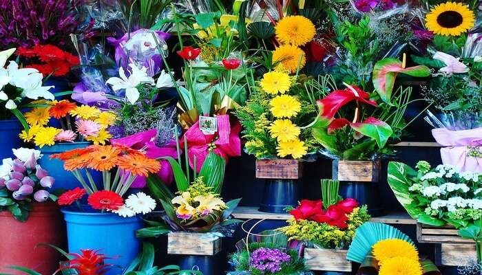 Ton_Lamyai_Market