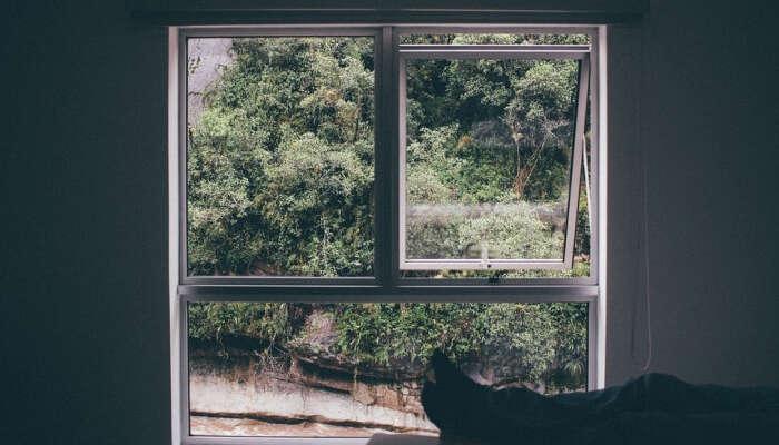 Window in a room