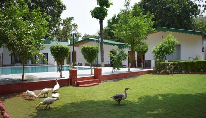 One Hotels Jim Corbett