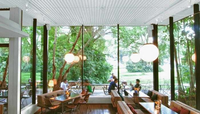 Open cafe in Singapore