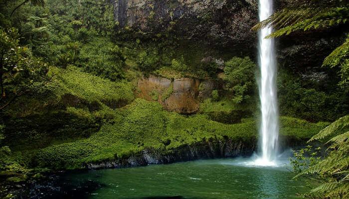 9 Beautiful Waterfalls In Fiji Worthy Of A Walk In The Woods