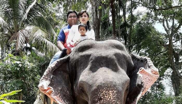 rode an elephant
