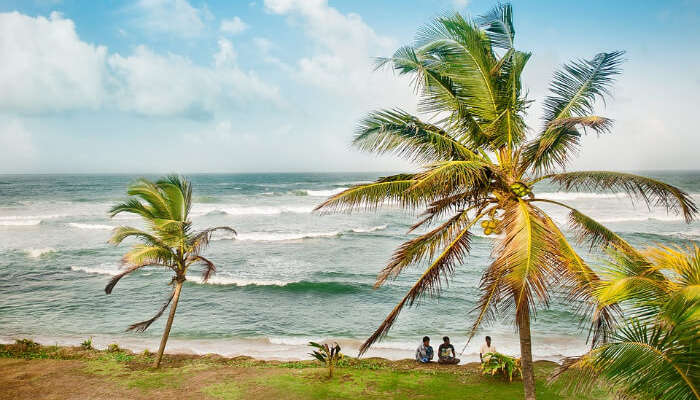 Best Time To Visit Sri Lanka