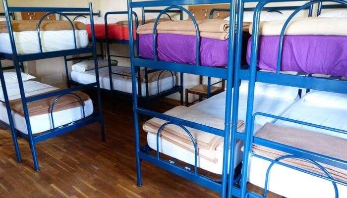 Florentine Backpackers Hostel