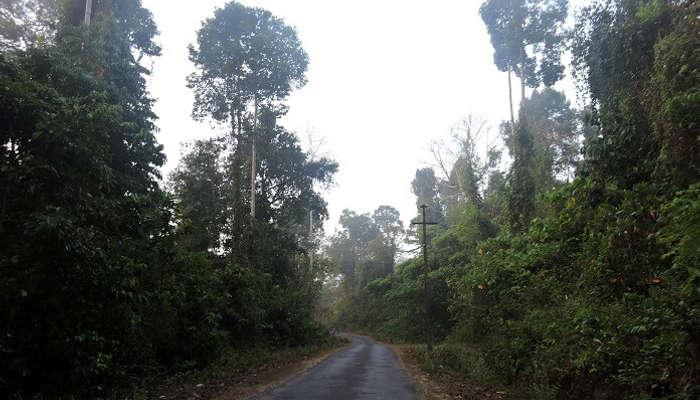 Jarwa Reserve