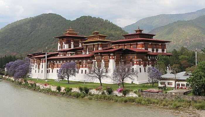 Punakha City Excursion