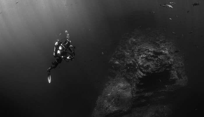 Scuba Diving Course