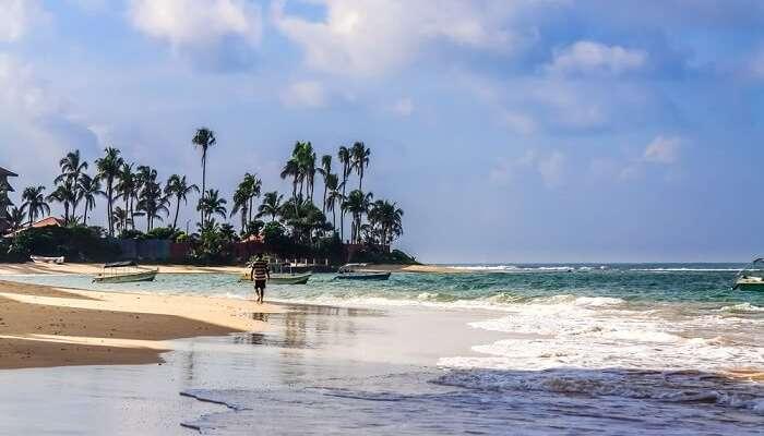 20 Romantic Honeymoon Places In Sri Lanka In 2020