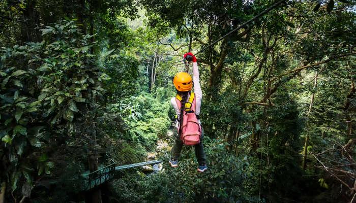 Woman in a Jungle ZipLine