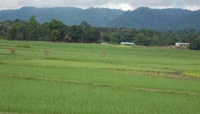 Jampui Hills In Tripura