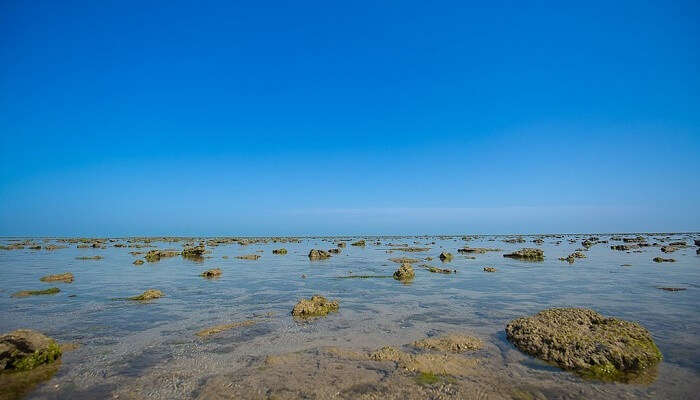 Marine National Park holidays Places gujarat india