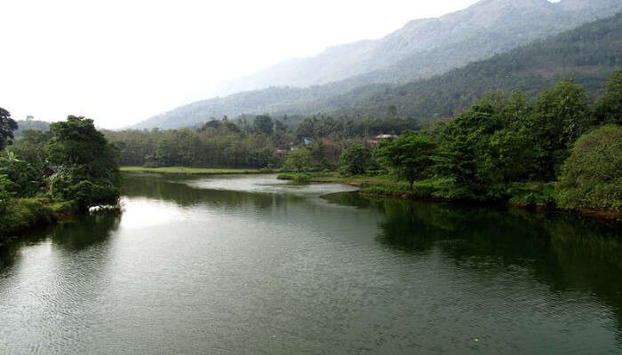 Thodupuzha River and Hills