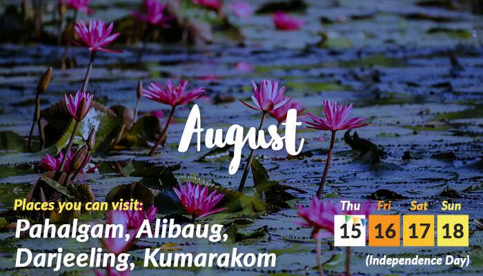Aug (2)