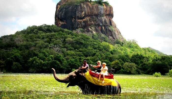 Elephant Ride, Kandy