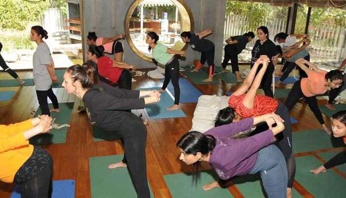 Iyengar Yoga Centre