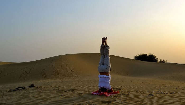 Lotus of the Desert Retreat