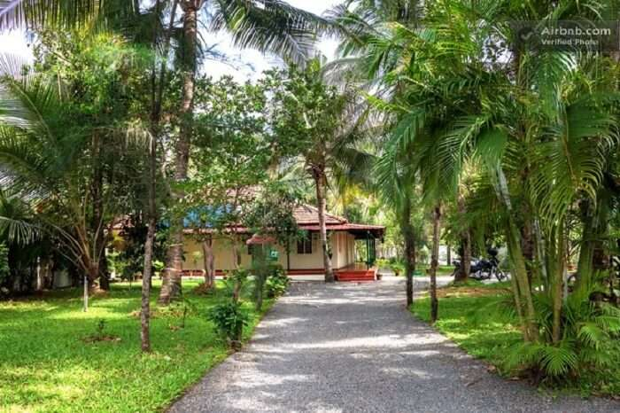 Palm Grove Service Villa is a homestay in Cochin like no other