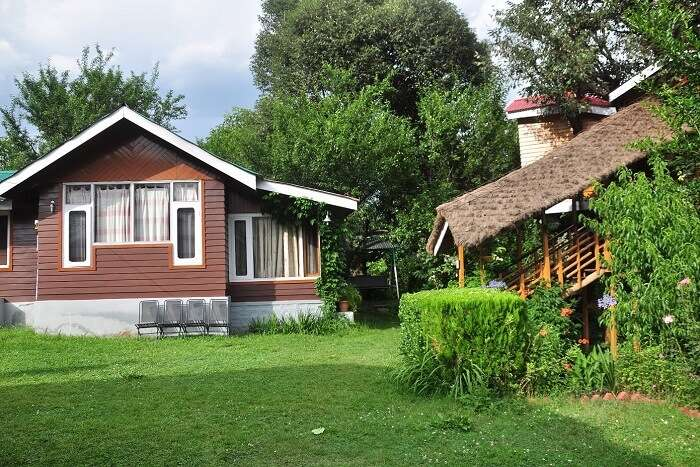 Treehouse Cottages in Manali