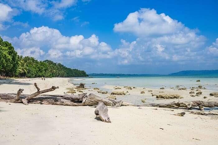 A shot from Vijayanagar Beach on Havelock Island