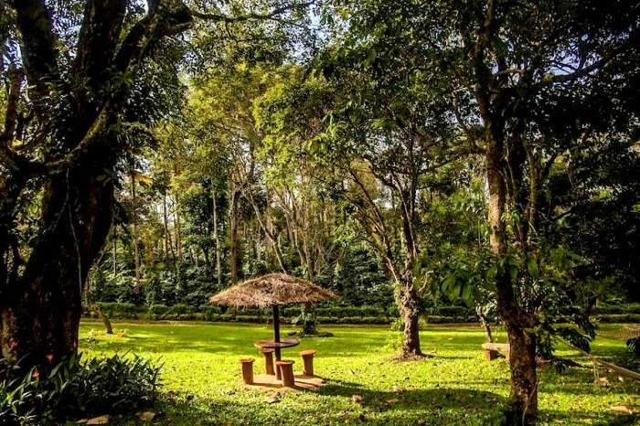 arka homestay in coorg